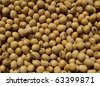 Closeup of dry soy beans - stock photo