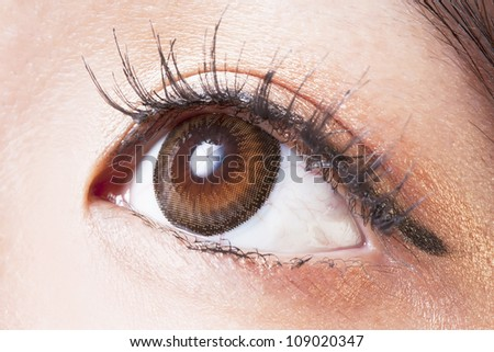 Closeup of Female eye with brown contact lenses macro - stock photo