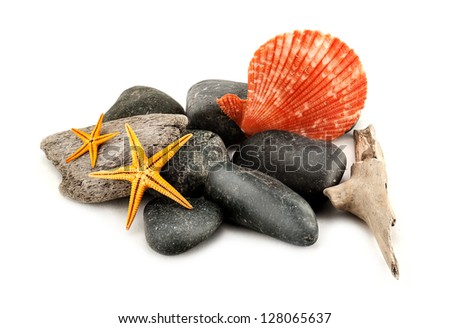 Closeup of few marine items, isolated on white. - stock photo