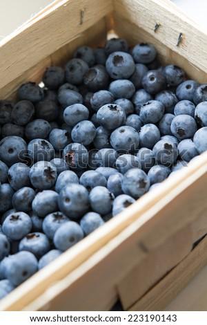 Closeup of fresh blueberries. fruit full of vitamin C  - stock photo