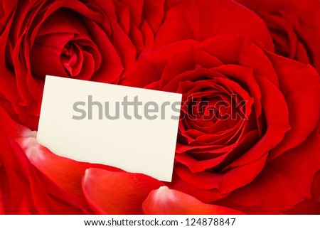 Closeup of gorgeous red roses and petals and an empty card for a loving message - stock photo