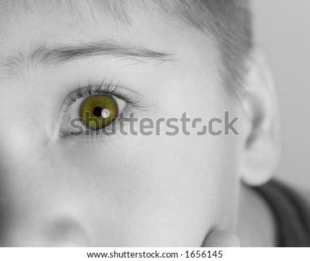 Closeup of Green Eye - stock photo