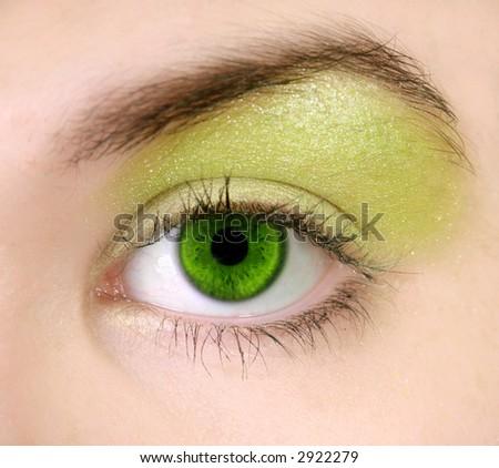 Closeup of green eye with makeup, selective focus on eye. - stock photo