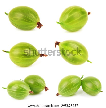 Closeup of green gooseberry isolated on white background - stock photo