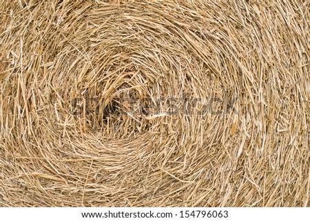 Closeup of hay stack - stock photo