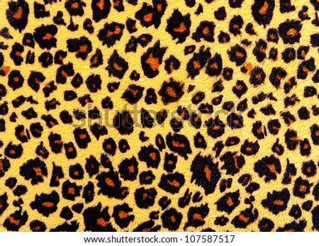 Closeup of leopard skin texture fur. - stock photo