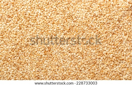 Closeup of lots of toasted sesame seeds  - stock photo