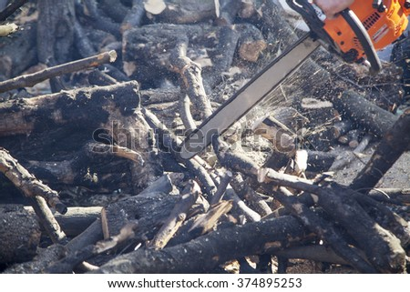 Closeup of lumberjack with chainsaw in action - stock photo