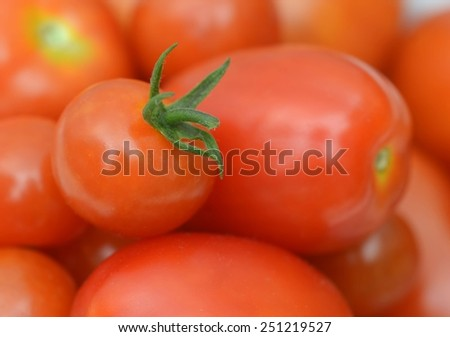 Closeup of red ripe home grown garden tomatoes - stock photo