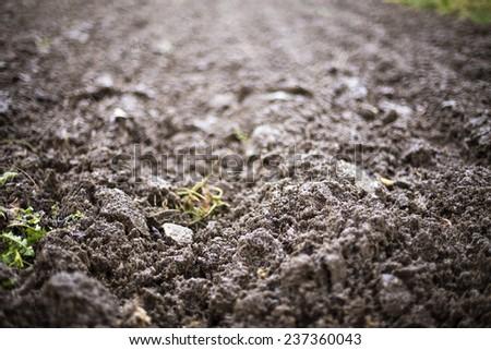 Closeup of  rural plowed  land - stock photo