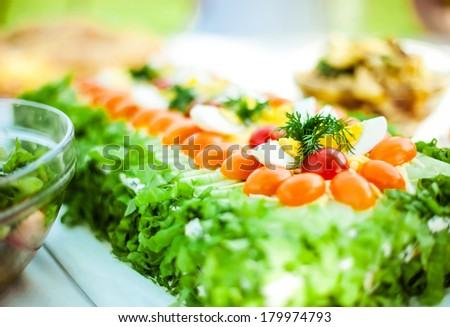Closeup of sandwich cake with tomatoes and salad - stock photo