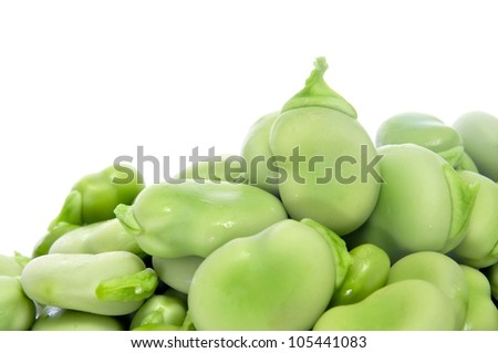 closeup of some broad beans on a white background - stock photo
