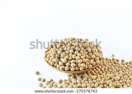 Closeup of soy beans on white background, selective focus  - stock photo