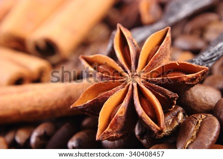 Closeup of star anise, fresh fragrant vanilla pods, cinnamon sticks and coffee grains, seasoning ingredients for cooking or baking - stock photo