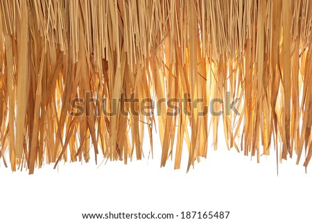 closeup of thatch roof isolated on white background - stock photo