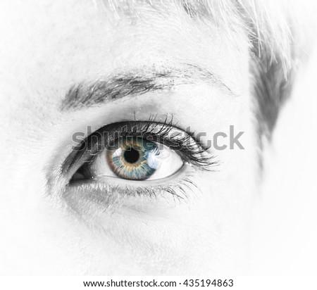 closeup of the beautiful female eye - stock photo