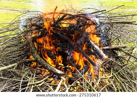 Closeup of tree branches burning in spring  - stock photo