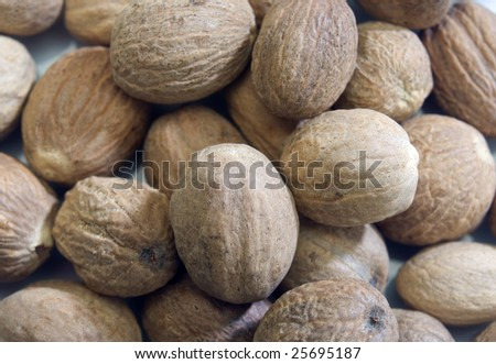 closeup of whole nutmeg - stock photo