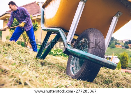 Closeup of yellow wheelbarrow in the field and young man with gloves raking hay on the background - stock photo