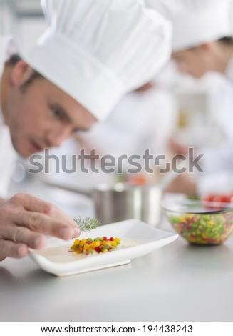 closeup on chef garnishing a plate - stock photo