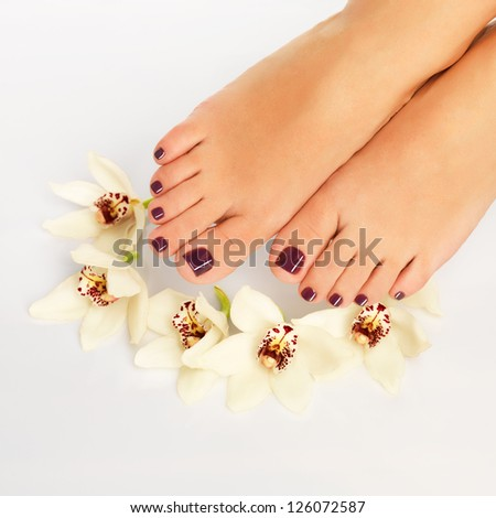 Closeup photo of a female feet with beautiful pedicure after spa procedure on white background - stock photo