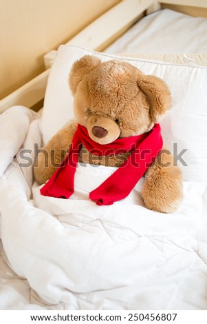 Closeup photo of brown teddy bear in red scarf lying in bed under blanket - stock photo