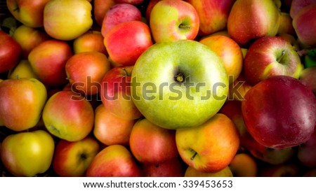 Closeup photo of one green apple lying on pile of red apples - stock photo