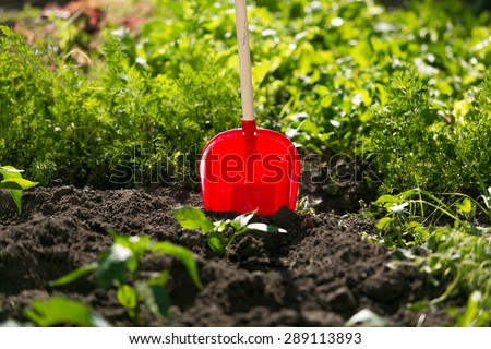Closeup photo of red spade stuck in garden bed - stock photo