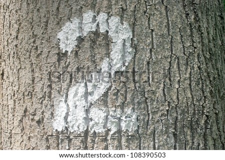 Closeup photo of the number two  painted onto a tree trunk - stock photo