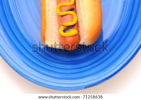 Closeup Picnic Table with hot dog on a blue plate Wiener has grill marks and mustard. - stock photo