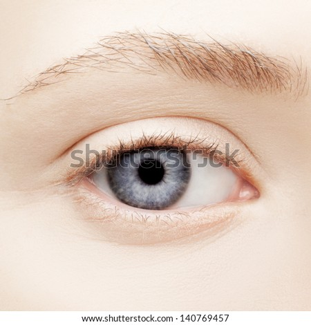 closeup portrait of young woman's eye zone make-up - stock photo