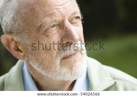 Closeup Profile on an Old Man With a Grey Beard - stock photo