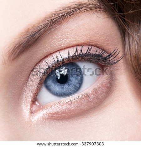 Closeup shot of female gray - blue colour eye  with day makeup - stock photo