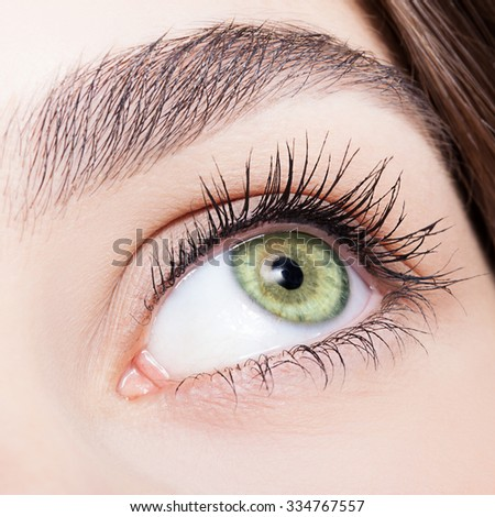 Closeup shot of female green pistachio colour eye  with day makeup - stock photo