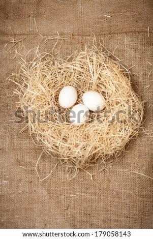 Closeup shot of three white eggs lying in nest - stock photo