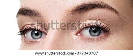 Closeup shot of woman eye with day makeup. Long eyelashes - stock photo