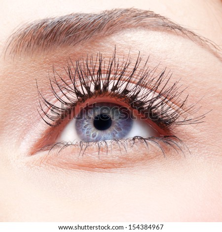 Closeup shot of woman eye with false lashes - stock photo