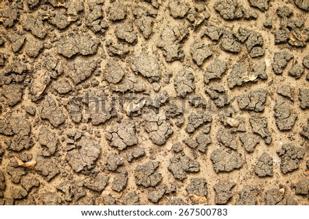 Closeup soil is dry , cracked - stock photo
