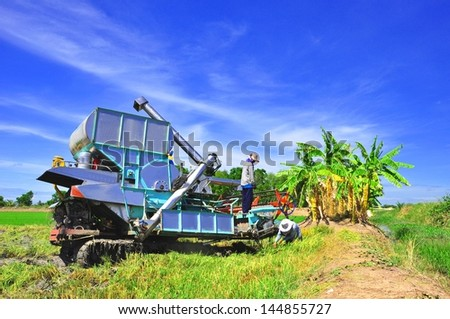 closeup Thai farmers are using. Harvest is harvested at rice field ,Thailand - stock photo