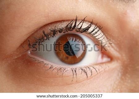 Closeup view of woman eye macro photography - stock photo