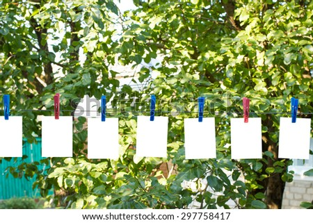 Clothespins on a wire in the yard with white isolated leaves on a background of trees - stock photo