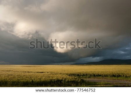 Cloud over harvest - stock photo