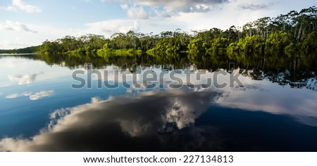 Cloud reflects over Pucate River, In Pacaya Samiria national reserve, Iquitos, Peru - stock photo