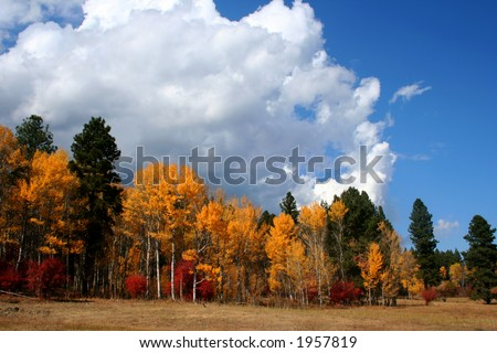 Clouds and color, Autumn in Valley County Idaho - stock photo