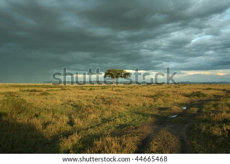 Clouds gather over African sky - stock photo