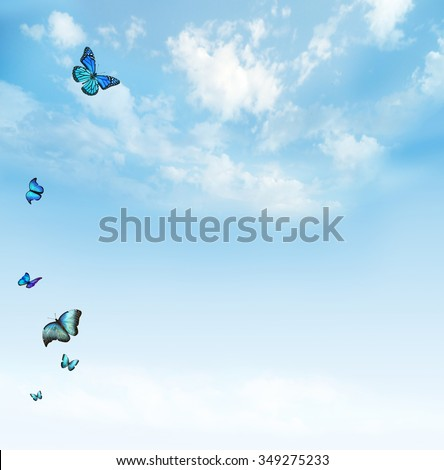 Clouds in the blue sky with butterflies - stock photo