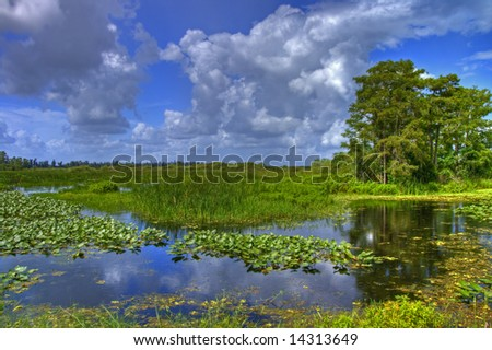 Cloudscape landscape in Everglades National Park in July - stock photo