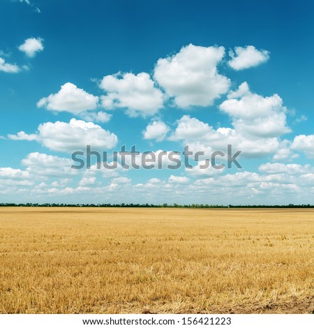 cloudy sky and golden field after harvesting - stock photo