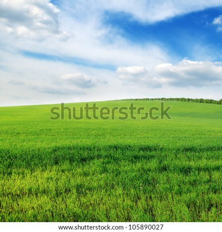 cloudy sky and green field - stock photo