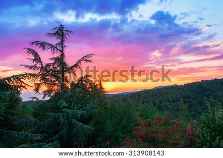 Cloudy sky over a wooded region after sunset - stock photo